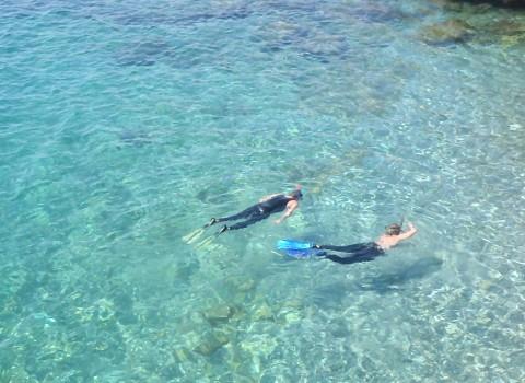 snorkeling a Coco beach à Nice