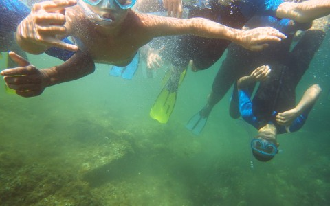 snorkeling au Pradet