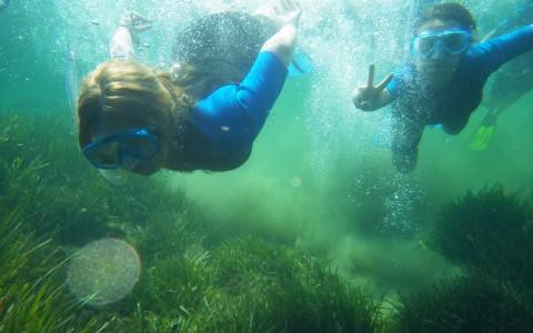snorkeling avec la colonie de vacances du Ma de l'Artaude