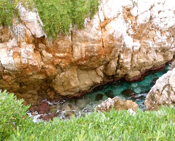 Balade aquatique – Alpes-Maritimes – Cap d'Antibes