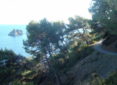 Var l La Seyne-sur-mer 3